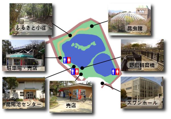 昆陽池公園内地図