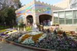 昆陽池伊丹市昆虫館の写真