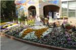 伊丹市昆虫館の写真