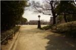 昆陽池公園広場への道からの写真