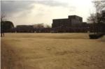 昆陽池広場の写真