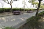 昆陽池公園ランニングコースの写真