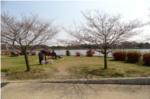 昆陽池公園ランニングコースから橋の写真