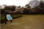 野鳥観察橋近くの広場の写真