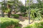 昆陽池公園内写真
