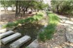 昆陽池公園内小川の写真